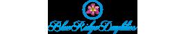 The Daylilies of Robert Selman at Blue Ridge Daylilies
